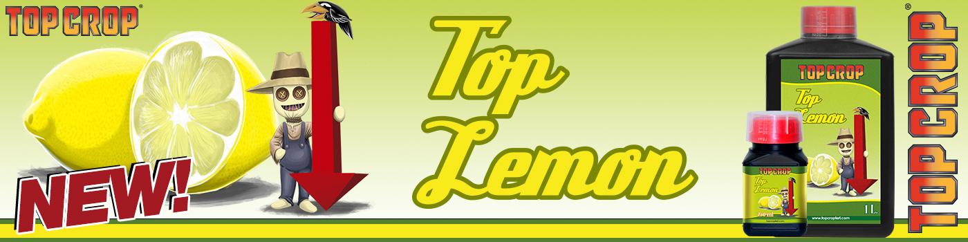 Top Lemon